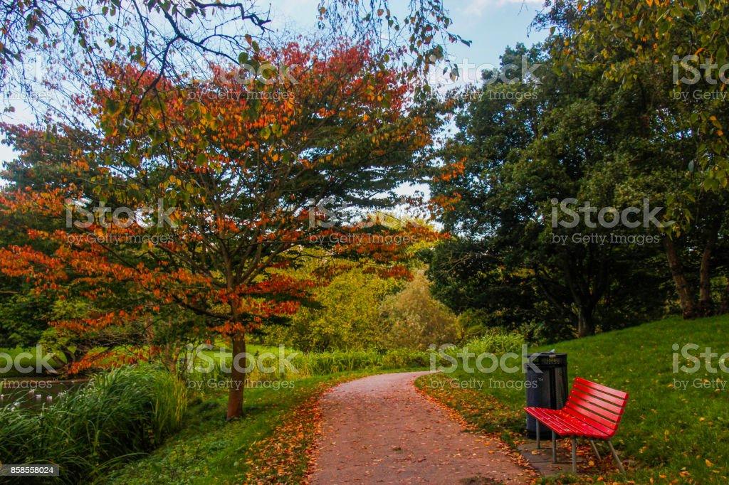 Autumn in Denmark stock photo