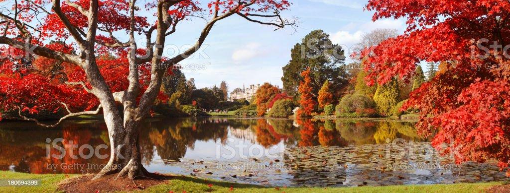 Autumn in England royalty-free stock photo