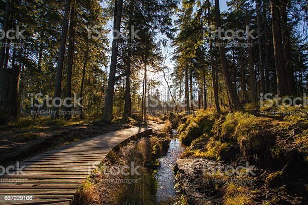 Autumn In German Mountains And Forests Stockfoto und mehr Bilder von Autoreise