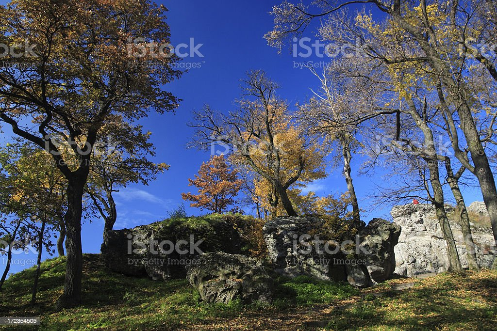 Autumn in Hungary royalty-free stock photo