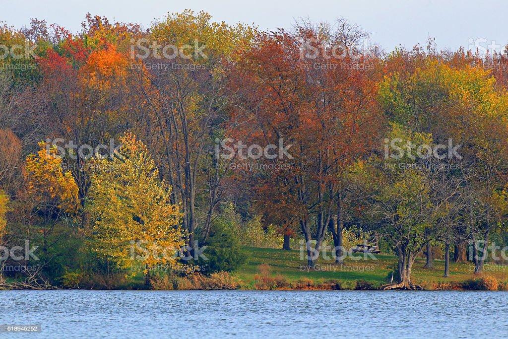 Autumn in Illinois 2016 #10 stock photo