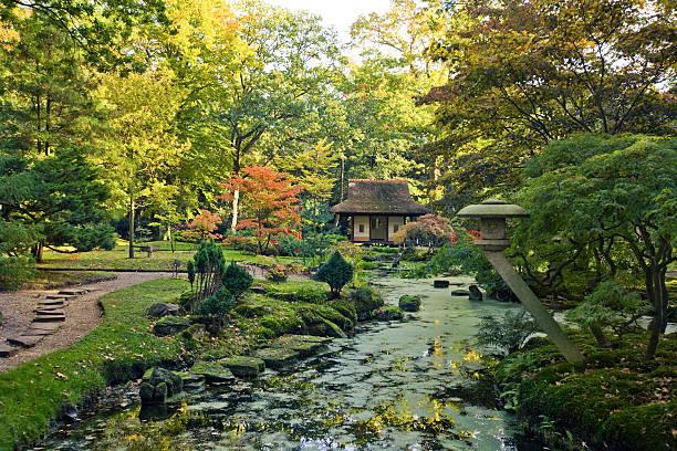 autumn in japanese garden stock photo
