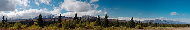autumn in kluane national park, yukon, canada - yt stock pictures, royalty-free photos & images