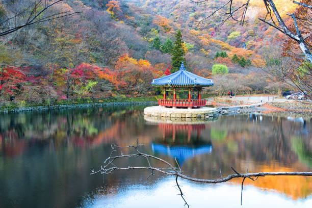 Autumn in Korea stock photo