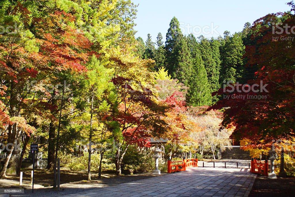 Autumn in Koyasan - Japan stock photo