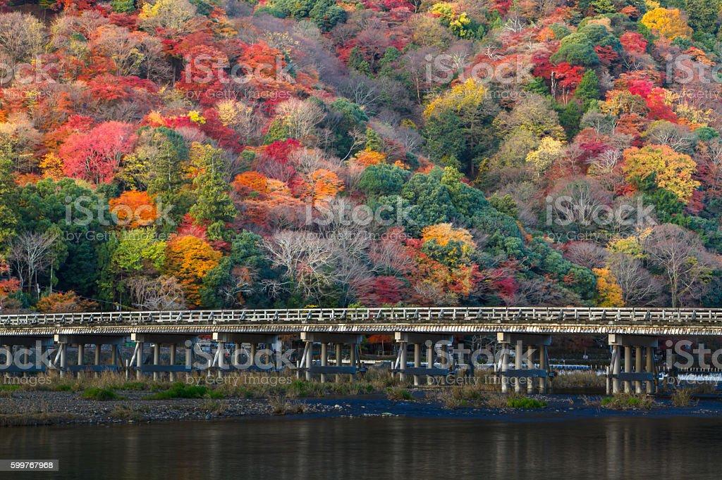 Autumn in Kyoto Arashiyama - foto stock