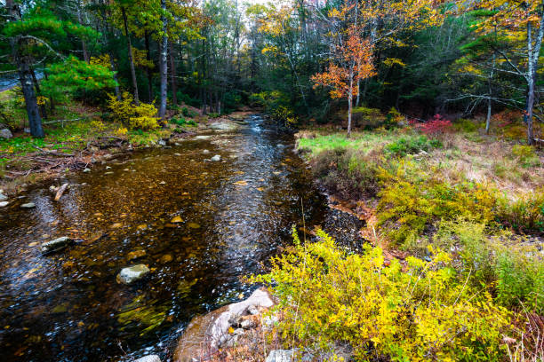 Autumn in Lake Minnewaska State Park Autumn in Lake Minnewaska State Park, New York: Peters Kill and Awosting Falls catskill mountains stock pictures, royalty-free photos & images