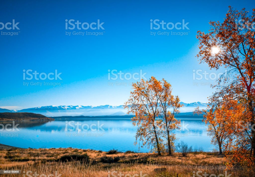 Autumn in Lake Pukaki , south Island, New Zealand landscape zbiór zdjęć royalty-free