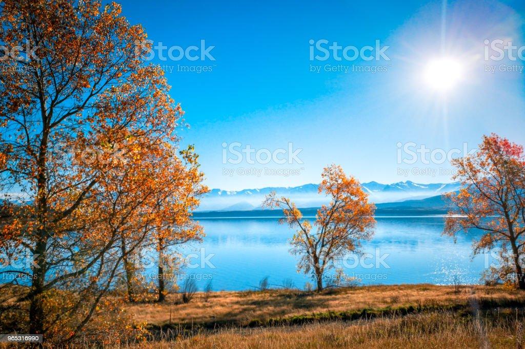 Autumn in Lake Pukaki , south Island, New Zealand landscape zbiór zdjęć royalty-free