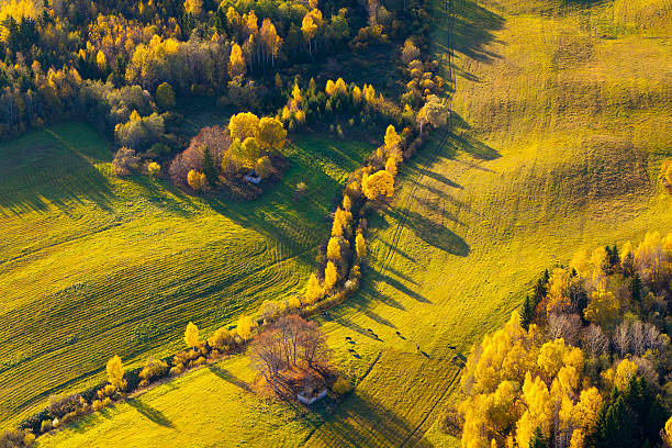 Autumn in Latvia stock photo