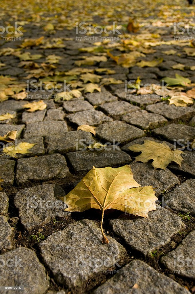 Autumn in Luxembourg stock photo