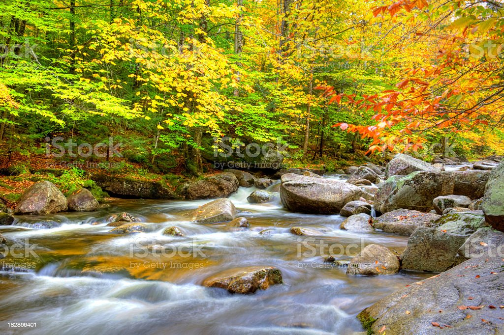 Autumn in Maine royalty-free stock photo