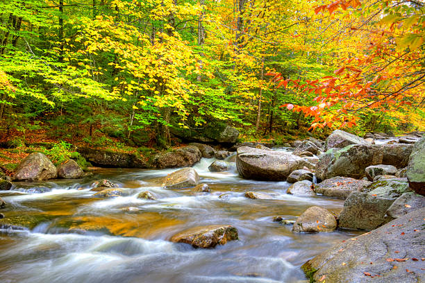 Autumn in Maine Autumn in the White Mountains National Forest in Maine. Photo taken of a fast flowing stream during the peak fall foliage season. Maine fall foliage ranks with the best in New England bringing out some of  the most beautiful foliage in the United States white mountain national forest stock pictures, royalty-free photos & images