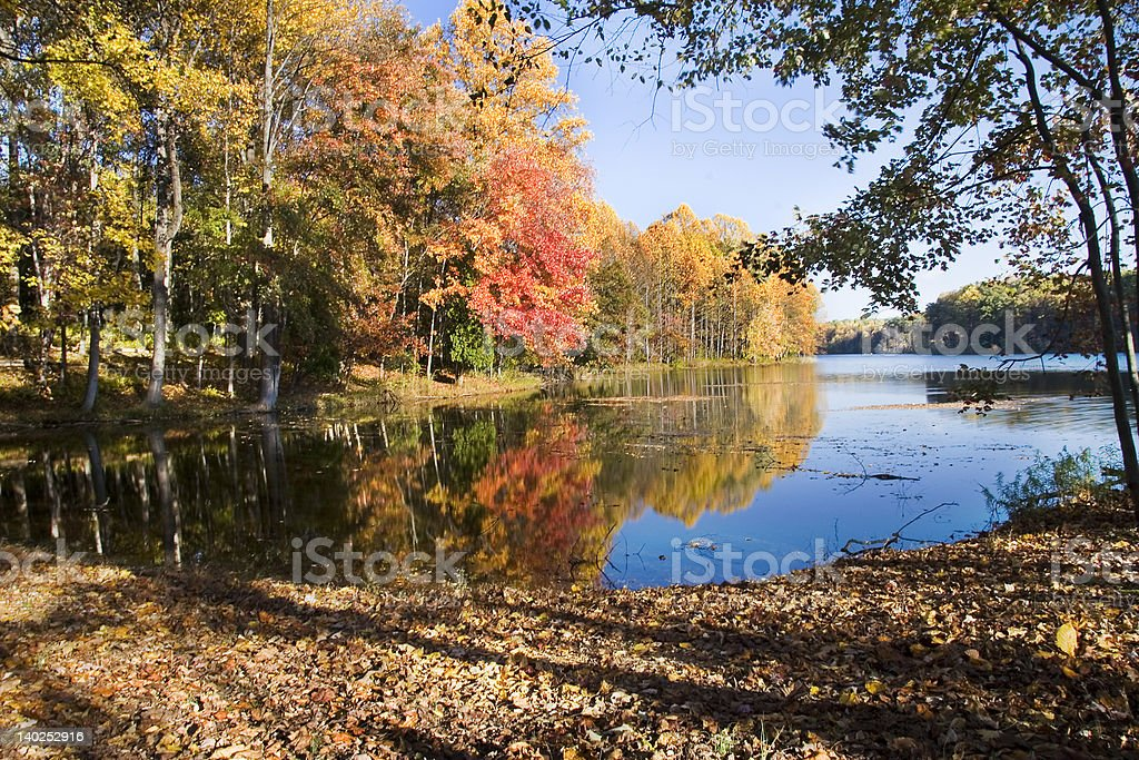 Autumn in Maryland royalty-free stock photo