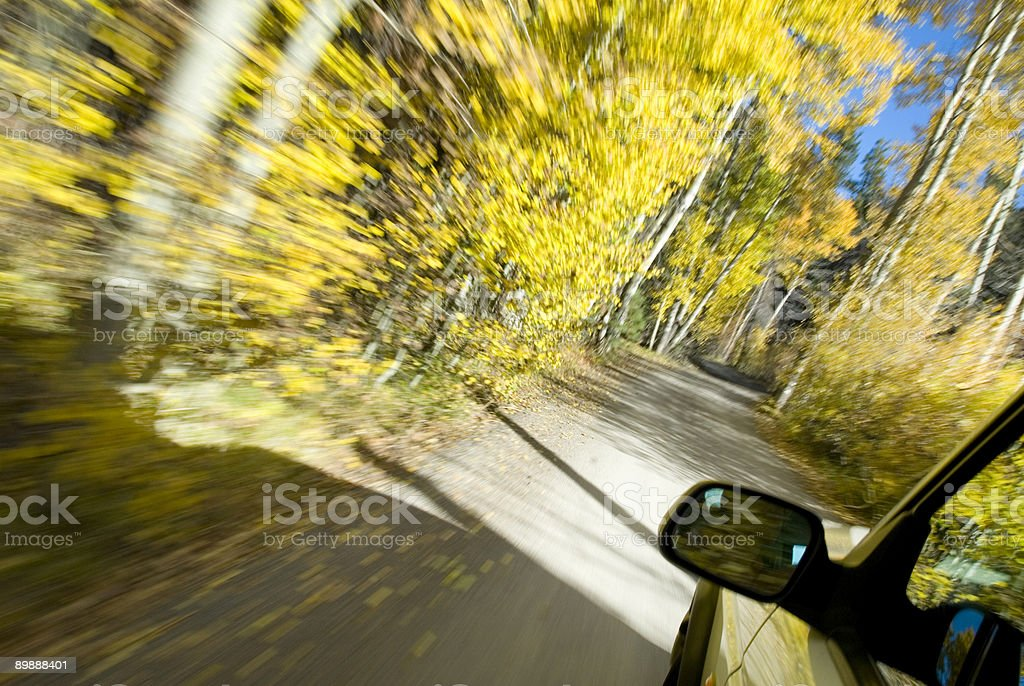 Autumn in Motion royalty-free stock photo