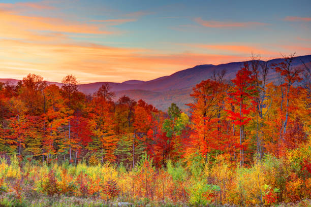 Autumn in New Hampshire The White Mountains are a mountain range covering about a quarter of the state of New Hampshire and a small portion of western Maine in the United States. white mountain national forest stock pictures, royalty-free photos & images