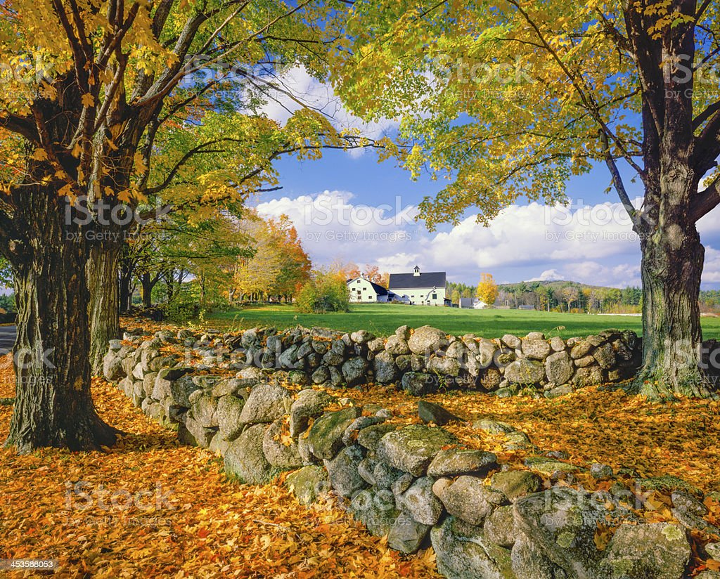 Autumn in New Hampshire (P) royalty-free stock photo