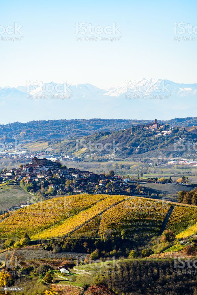 Autumn in northern italy region called langhe with colorful wine Lizenzfreies stock-foto