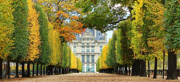 outono em paris - museu do louvre imagens e fotografias de stock