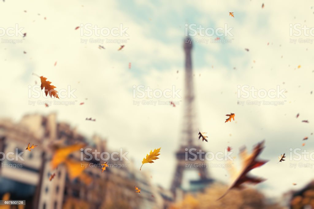 Autumn In Paris stock photo