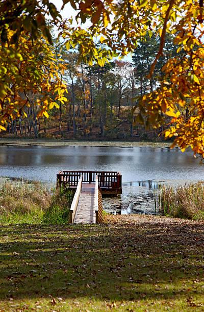 Autumn in Ridgeland stock photo