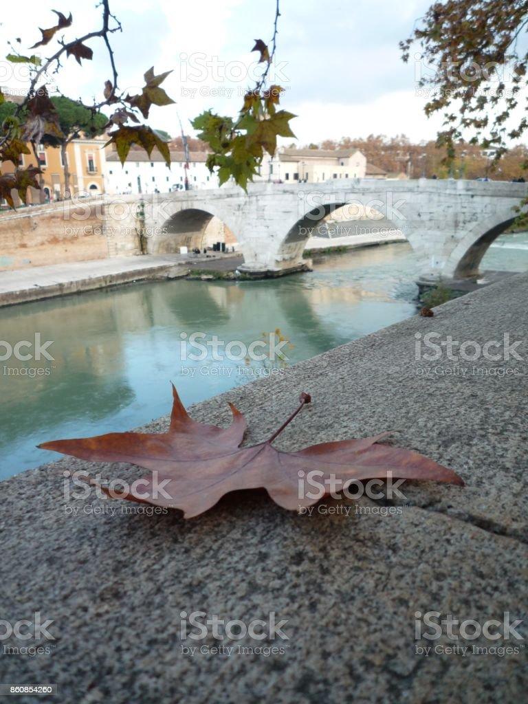 autumn in rome stock photo