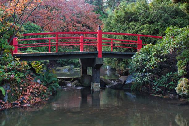 Autumn in Seattle stock photo