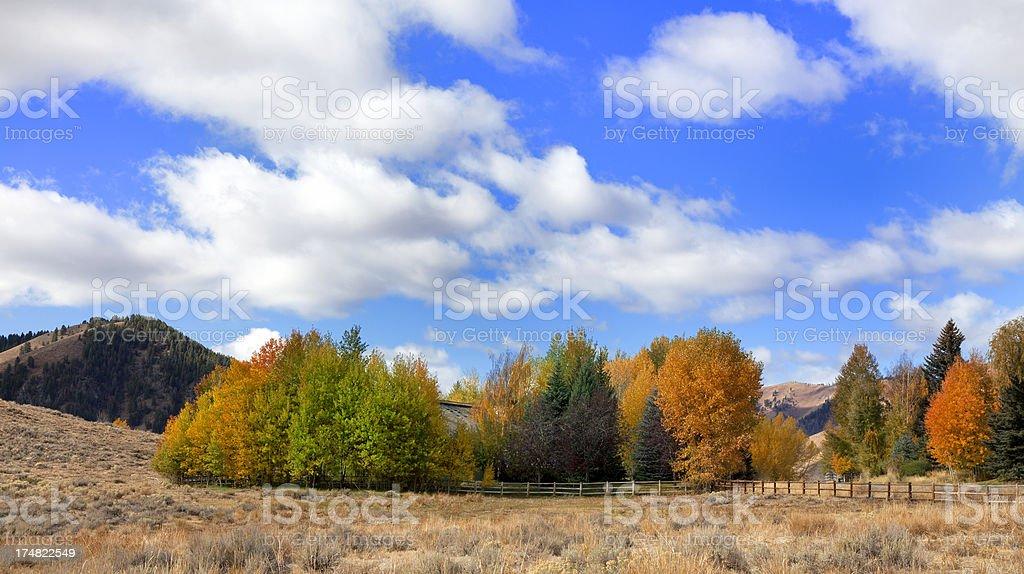 Autumn in Sun Valley royalty-free stock photo
