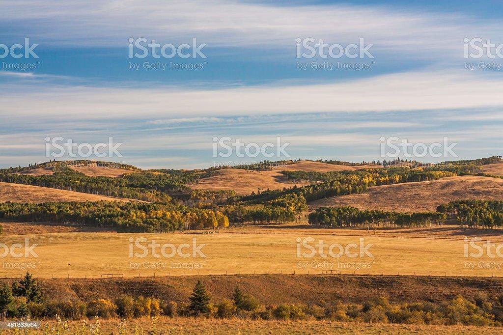 Autumn in the Alberta foothills. stock photo