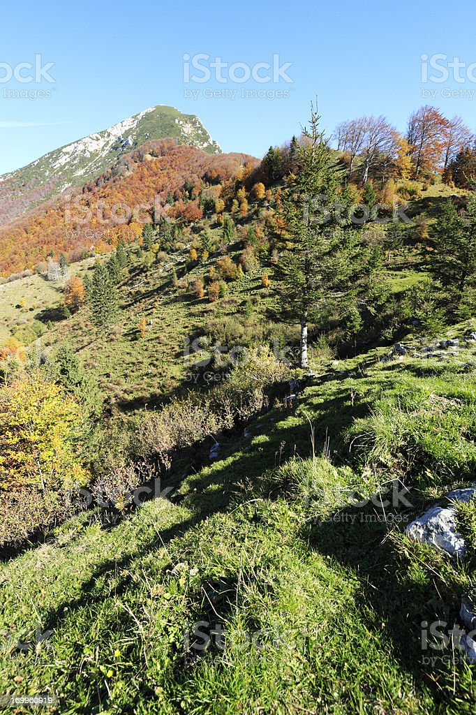 Autumn in the Alps royalty-free stock photo