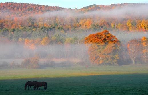 Autumn in the Berhires