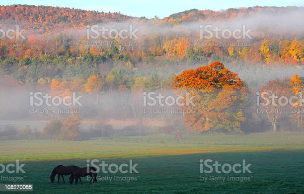 Photo of Autumn in the Berhires