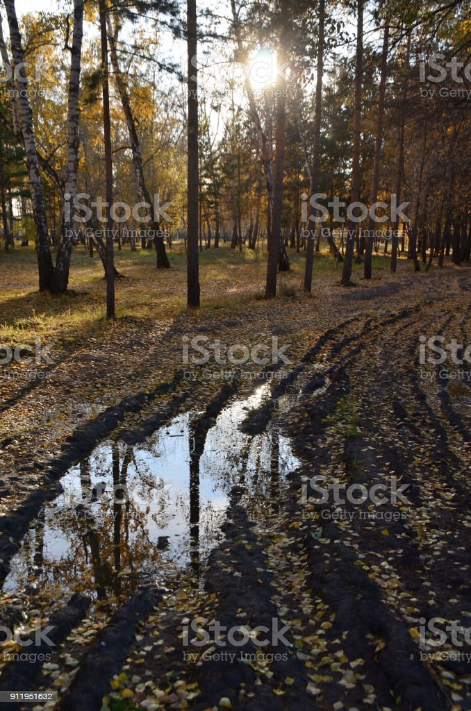 Autumn in the city park named after the 30th anniversary of the Komsomol. Omsk, Siberia, Russia стоковое фото