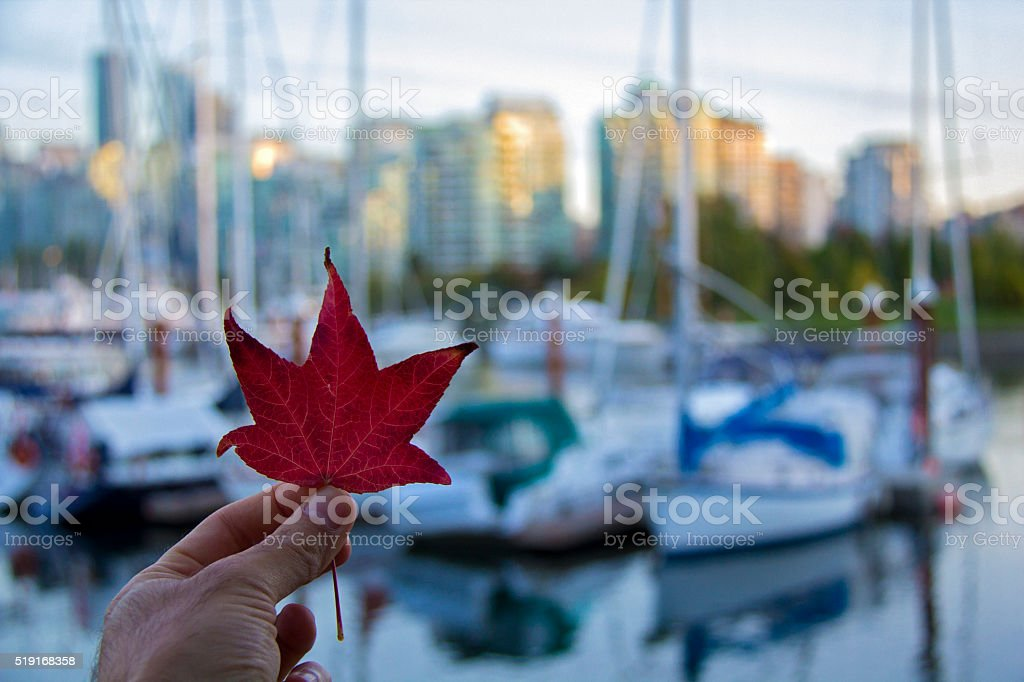 Autumn in the City stock photo