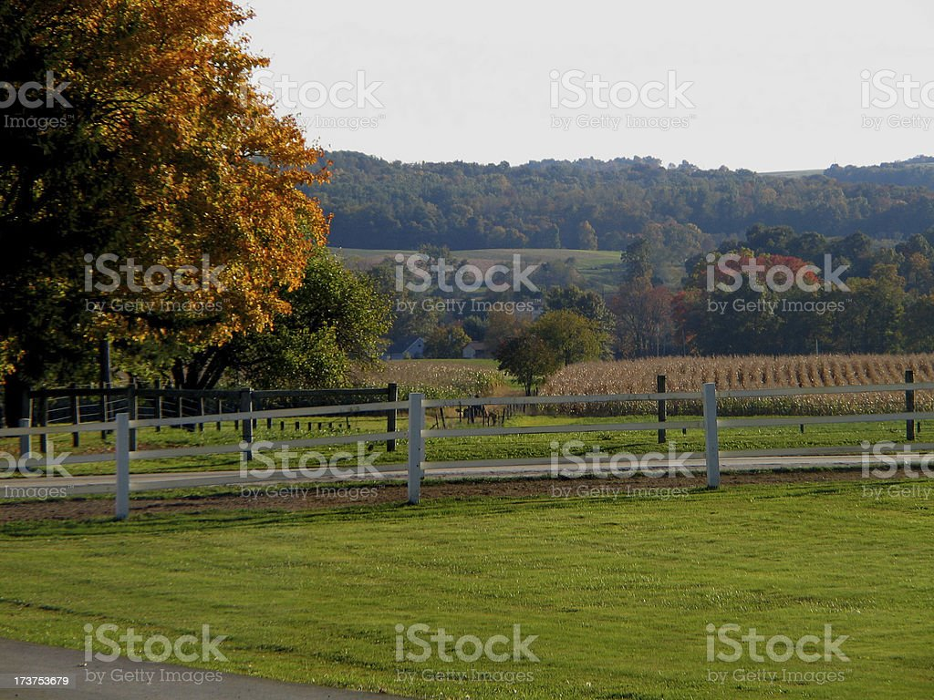 Autumn In The Country royalty-free stock photo