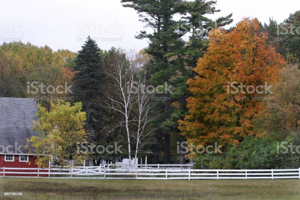 Autumn in the country stock photo