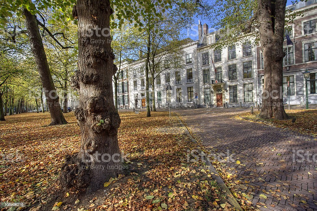 Autumn in The Hague royalty-free stock photo