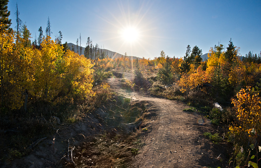 Hiking trail in the fall within the Rocky Mountains