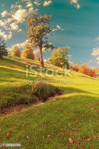 autumn, England countryside - beautiful autumn composition.