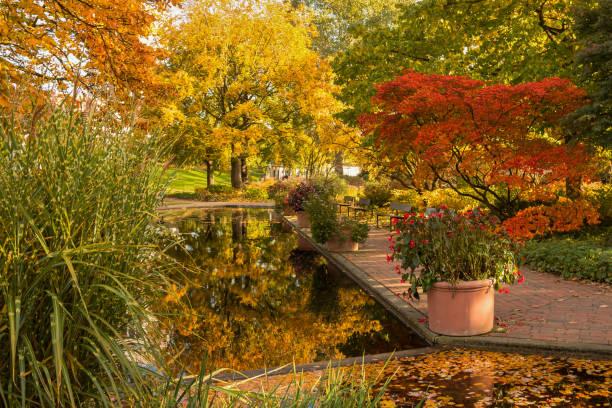 Herbst im Park – Foto