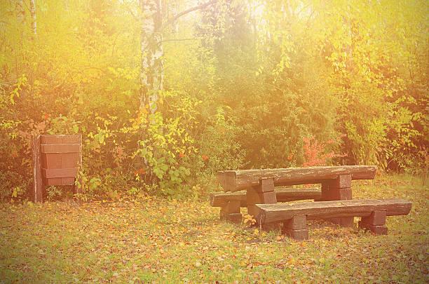 herbst im park - mülltonnenhäuschen stock-fotos und bilder