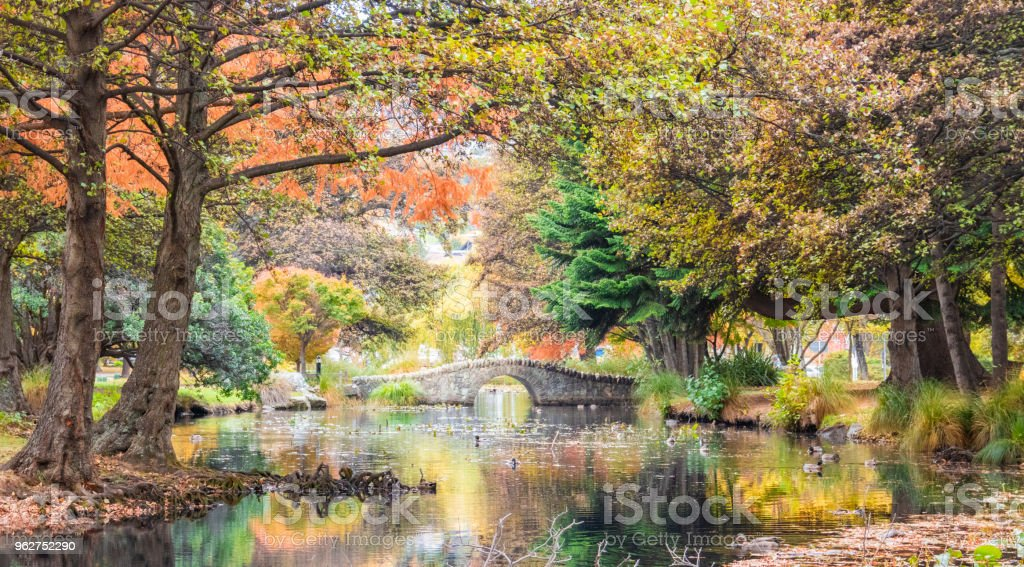 Autumn in the park - foto stock