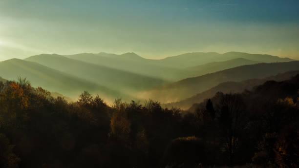Herbst im Urwald. Bieszczady-Gebirge. Bukowe Berdo und Tarnica Almwiese – Foto