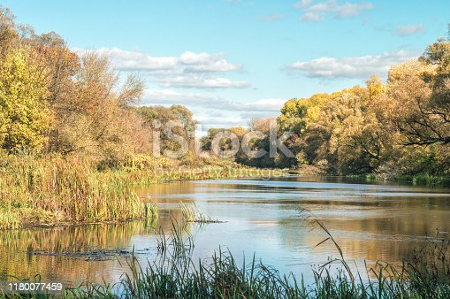 Autumn in the scenic Khoper river and picturesque forest path. Mood of the Russian outback, fall landscape.