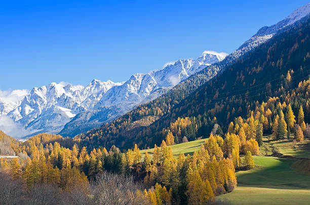 Herbst in den Schweizer Bergen, in der Nähe von Davos – Foto