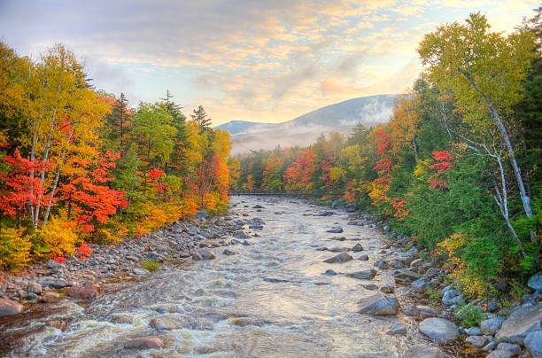 Autumn in the White Mountains National Forest New Hampshire  white mountain national forest stock pictures, royalty-free photos & images