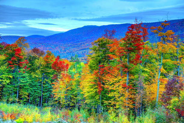Autumn in the White Mountains of New Hampshire The White Mountains are a mountain range covering about a quarter of the state of New Hampshire and a small portion of western Maine in the United States conway new hampshire stock pictures, royalty-free photos & images