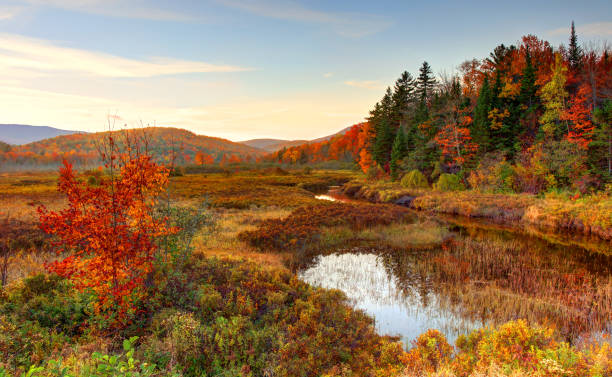 Autumn in the White Mountians Region of New Hampshire The White Mountains are a mountain range covering about a quarter of the state of New Hampshire and a small portion of western Maine in the United States. white mountain national forest stock pictures, royalty-free photos & images
