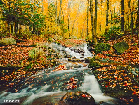 Molly Brook Cascades Through The Autumn Forest Near Groton Vermont  [url=http://www.istockphoto.com/search/lightbox/11154853?refnum=rachwal81#1ea91a24][img]http://davesucsy.com/rpt/ThomasBanner16a.jpg[/img][/url] [url=file_closeup.php?id=26122276][img]file_thumbview_approve.php?size=1&id=26122276[/img][/url] [url=file_closeup.php?id=14219895][img]file_thumbview_approve.php?size=1&id=14219895[/img][/url] [url=file_closeup.php?id=13960124][img]file_thumbview_approve.php?size=1&id=13960124[/img][/url]