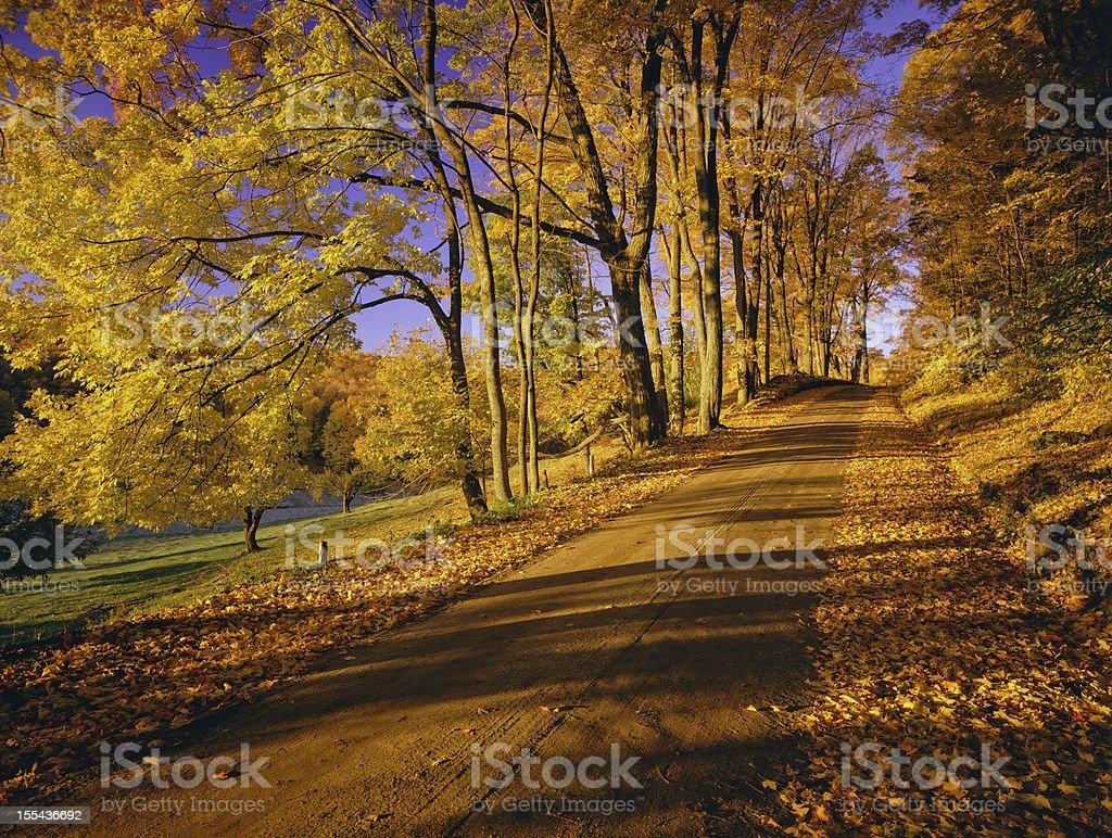 Autumn In Vermont royalty-free stock photo